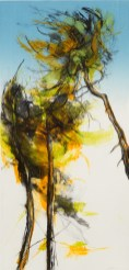 Clare Grossman, Pines Entwined, 'Summer Breeze No 5', Drypoint and monoprint
