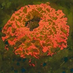 Jane Barton 'Red Dahlia' linocut £90