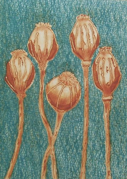 Sue Roe 'Poppy Seedheads 1' collagraph £75
