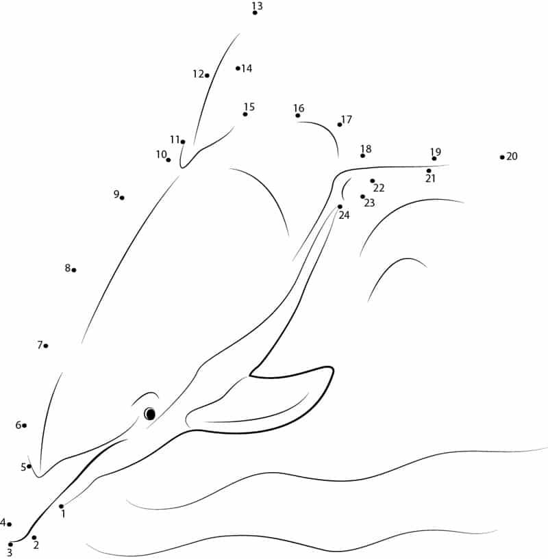 punkt zu punkt delfine zum ausdrucken kostenlos für