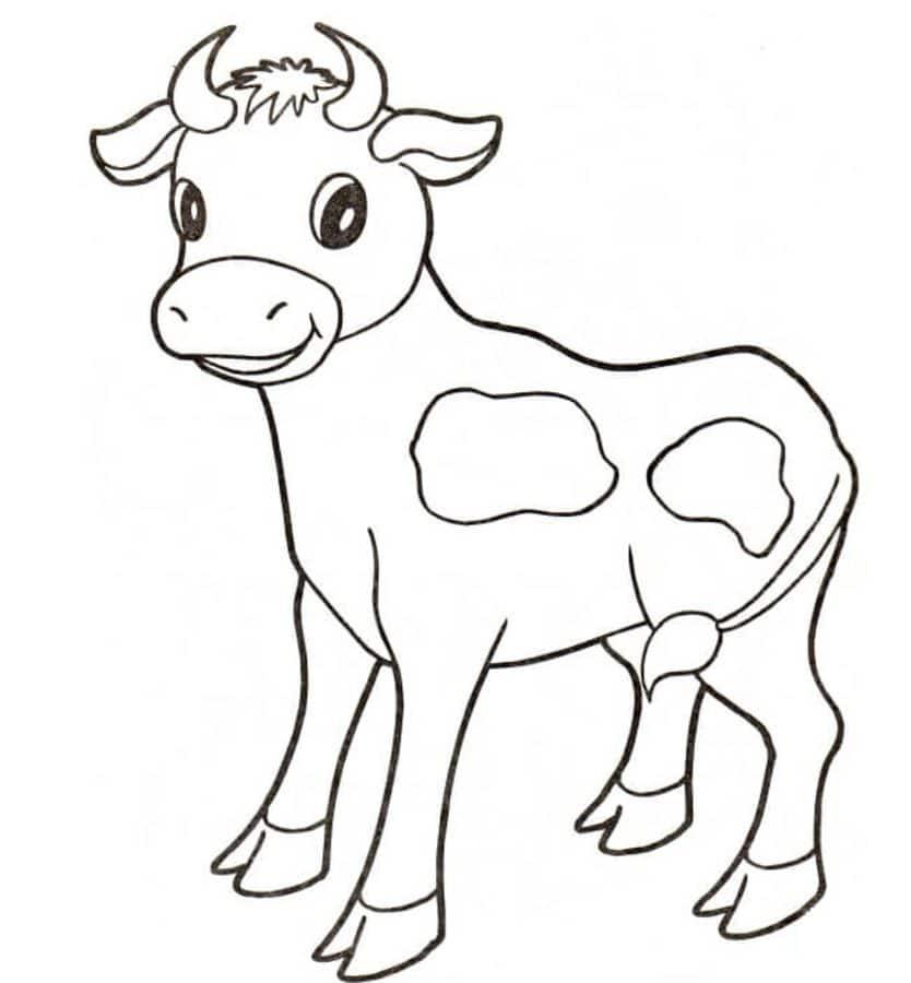 Dibujos Para Colorear Vacas Imprimible Gratis Para Los Niños Y