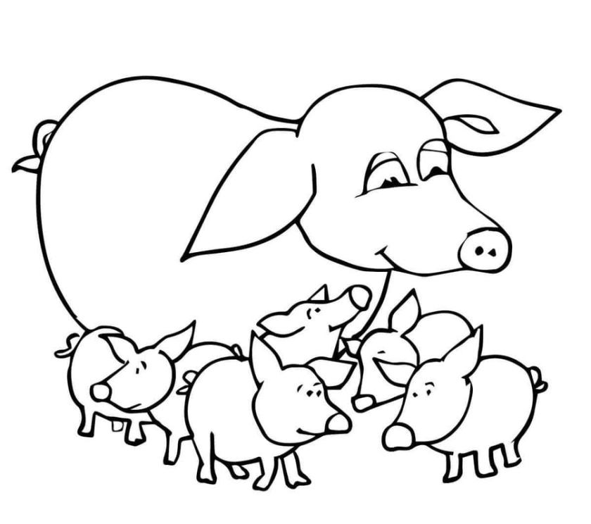coloring pages coloring pages pig printable for kids
