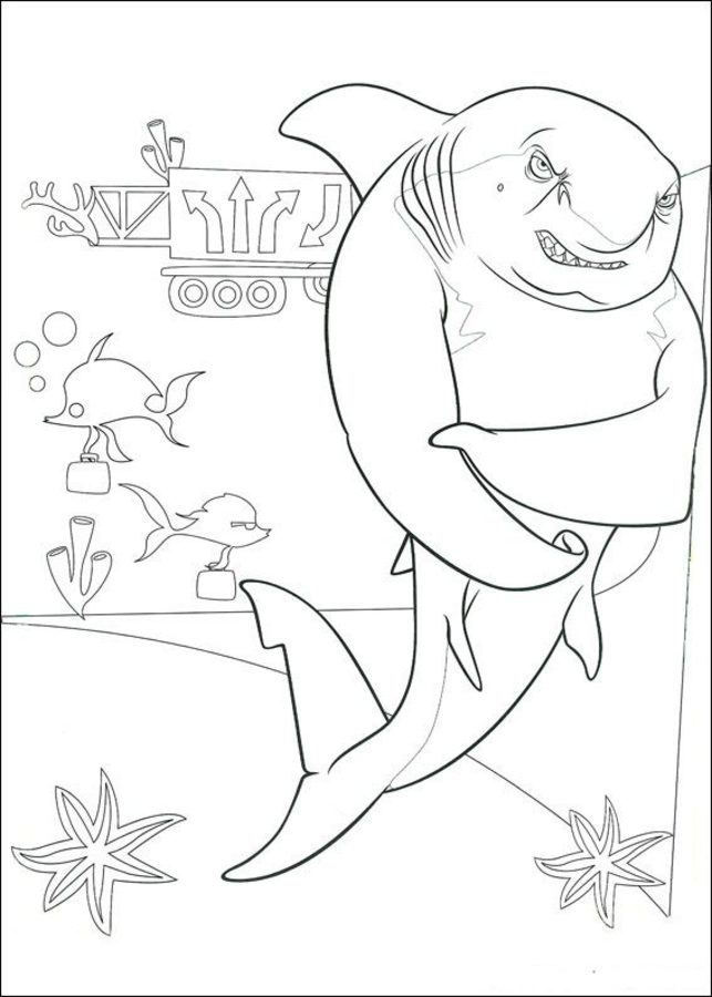 ausmalbilder ausmalbilder große haie  kleine fische zum