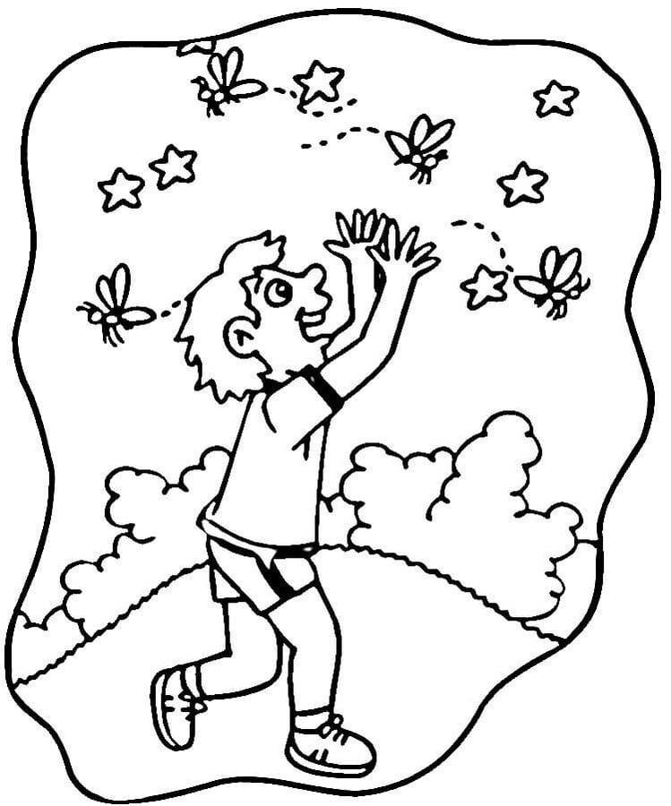 disegni da colorare disegni da colorare mosca stampabile