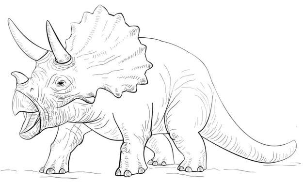 Ausmalbilder: Triceratops