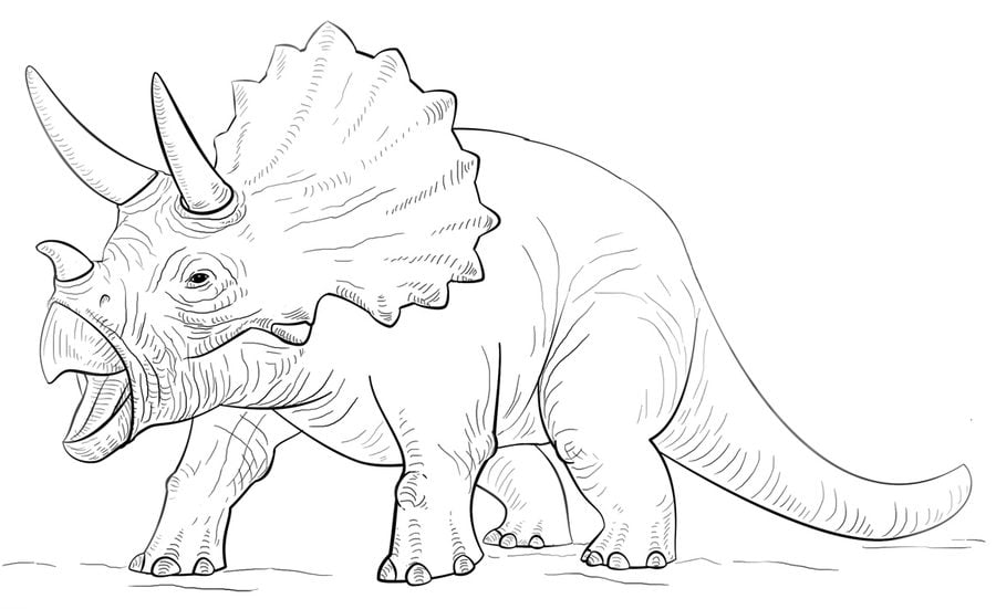 Coloring Pages Coloring Pages Triceratops Printable For Kids Adults Free