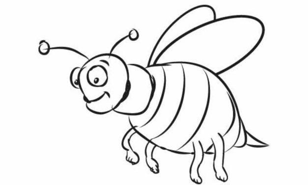 ausmalbilder: insekten zum ausdrucken, kostenlos, für