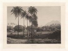 Java: Banjowangui (Banyuwangi): Former capital of the Hindu Blambangan kingdom looking towards the Ijen volcano range. After Lavergne Barthlemy, artist on the voyage of La Favorite 1829-32.
