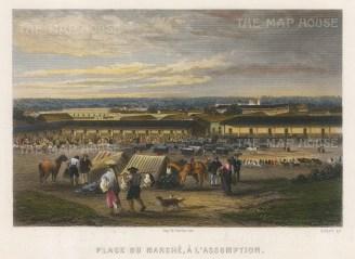 "Chardon: Asuncion, Paraguay. 1820. A hand coloured original antique steel engraving. 7"" x 5"". [SAMp330]"
