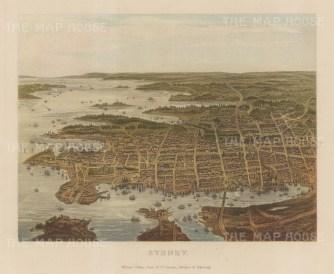 """Collins: Sydney. c1870. An original antique chromolithograph. 10"""" x 8"""". [AUSp720]"""
