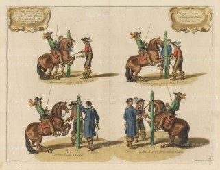 Dressage: Four examples of the courbette, where the horse jumps in rotation on its hind legs.
