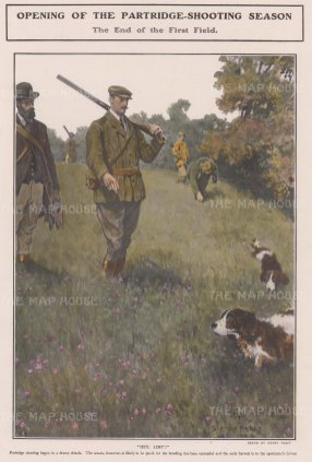 "The Sphere: Patridge Shooting. 1904. A hand coloured original antique photolithograph. 9"" x 14"". [FIELDp1557]"