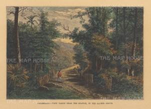 """Reclus: Pelambang, Sumatra. 1894. A hand coloured original antique wood engraving. 8"""" x 6"""". [SEASp1679]"""