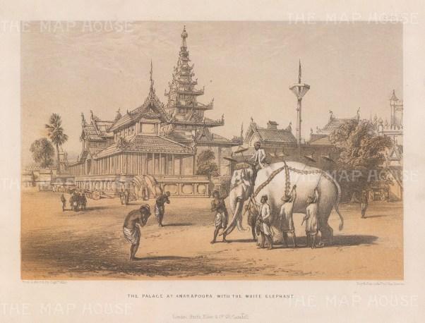 Amarapura. View of the palace and King Mindon's rare white elephant.
