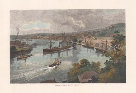 "Picturesque Australia: Brisbane. 1888. A hand coloured original antique wood engraving. 11"" x 7"". [AUSp765]"