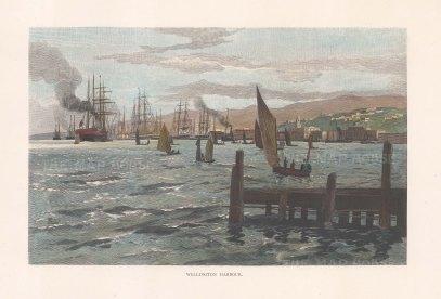 """Picturesque Australia: Wellington. 1888. A hand coloured original antique wood engraving. 11"""" x 7"""". [NWZp305]"""