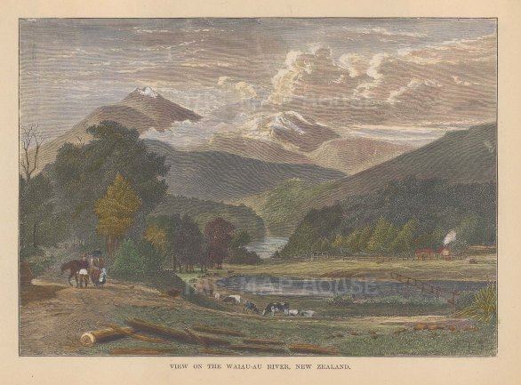 "Brown: Waiau-au River. 1885. A hand coloured original antique wood engraving. 8"" x 6"". [NWZp210]"