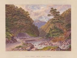 Otira Gorge, West Coast Road. View over the Otira River into the gorge.