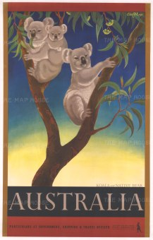 Promotional poster with a Koala or Native Bear. After the Anglo-Antipodean artist Eileen Mayo.