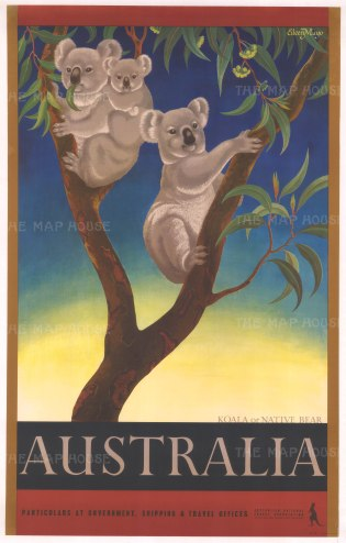 Australia: Promotional poster with a Koala or Native Bear. After the Anglo-Antipodean artist Eileen Mayo.