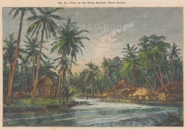 "Brown: River Amandit, Borneo. 1885. A hand coloured original antique wood engraving. 8"" x 6"". [SEASp1092]"