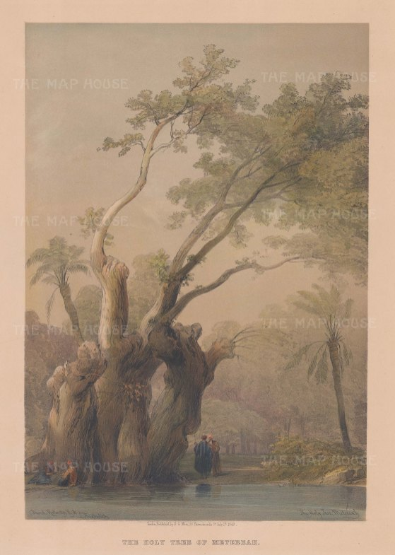 """Roberts: Holy Tree of Metereah. 1849. A hand coloured original antique lithograph. 11"""" x 16"""". [EGYp1100]"""