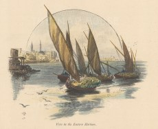 "Picturesque Mediterranean: Alexandria. c1880. A hand coloured original antique wood engraving. 6"" x 5"". [EGYp1114]"