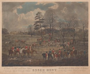 The Death from Dunnon High Wood at Easton Lodge.