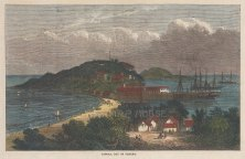 "Illustrated London News: Taboga Island, Gulf of Panama. 1870. A hand coloured original antique wood engraving. 10"" x 6"". [CAMp60]"