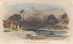 Timor: View near Kupang on the Koinino River.
