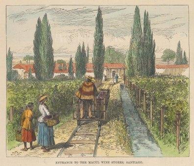 "Illustrated London News: Santiago, Chile. 1889. A hand coloured original antique wood engraving. 6"" x 5"". [SAMp1460]"