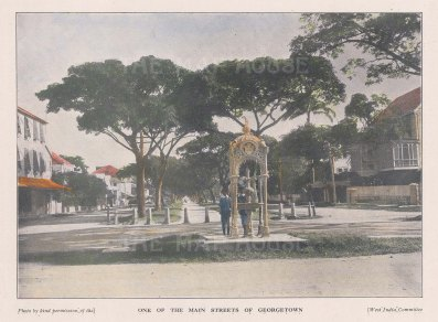 "West India Committee: Georgetown, Guyana. c1900. A hand coloured original antique photo-lithograph. 8"" x 5"". [SAMp959]"