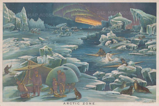 Arctic Zone: Educational chart showing the frigid mountainous environment, animals and inhabitants of polar regions.