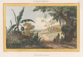 "de Rienzi: Tanna Island, Vanuatu. 1837. A hand coloured original antique steel engraving. 6"" x 4"". [PLYp261]"