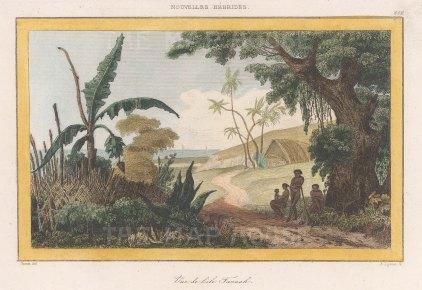 "de Rienzi: Tanna Island, Vanuatu. 1837. A hand coloured original antique steel engraving. 6"" x 4"". [PLYp261]"