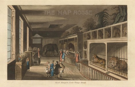 Established 1773, the menagerie competed with the Tower menagerie until the Change was demolished in 1829.