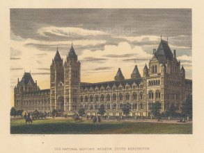 """Cassell: Natural History Museum, South Kensington. c1883. A hand coloured original antique steel engraving. 8"""" x 5"""". [LDNp10870]"""