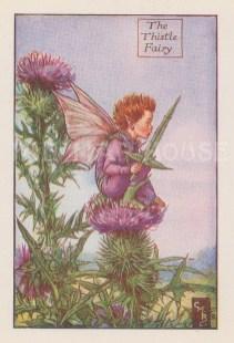 "Barker: Thistle Fairy. c1925. An original vintage chromolithograph. 3"" x 4"". [DECp2106]"