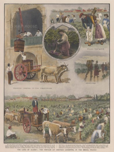 """Illustrated London News: Chateau Loudenne, Medoc. 1905. A hand coloured original antique photo-lithograph. 9"""" x 12"""". [FRp1654]"""