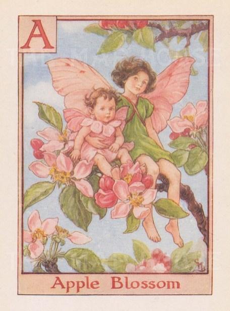 "Barker: Apple Blossom Fairy. c1934. An original vintage chromolithograph. 3"" x 4"". [DECp1967]"