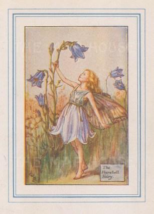 "Barker: Harebell Fairy. 1927. An original vintage chromolithograph. 3"" x 4"". [DECp2214]"