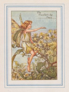 "Barker: Traveller's Joy Fairy. 1927. An original vintage chromolithograph. 3"" x 4"". [DECp2215]"