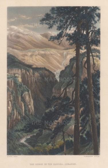 Kadisha: Bird's eye view of the Kadisha Valley from the Cedars of God (Arz ar-Rabb).