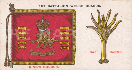 Cap badge and colours.