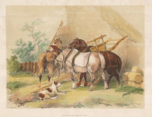 Horse Cart after the Edwardian artist known as Cow Cooper.