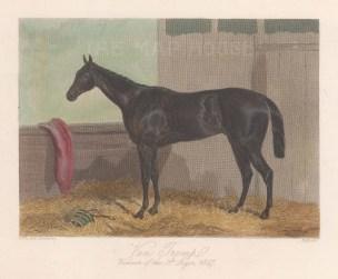 Winner of the St. Leger, 1847.