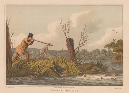 """Alken: Flacker Shooting. 1903. An original antique chromolithograph. 13"""" x 9"""". [FIELDp1446]"""