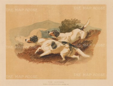 Two English setters after Sir Edwin Landseer.