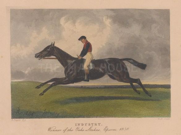 Winner of the Oaks Stakes, Epsom 1838 with jockey Bill Scott.