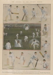 Surrey v. Worcestershire. With portraits of the Australians practising at Lord's.